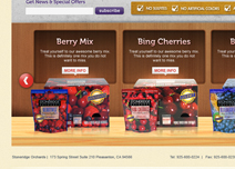 dried fruit website